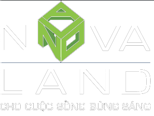 Mạnh Novaland